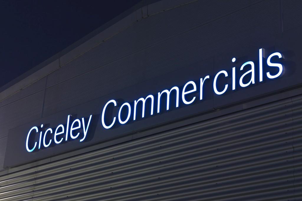 Image result for Ciceley Commercials